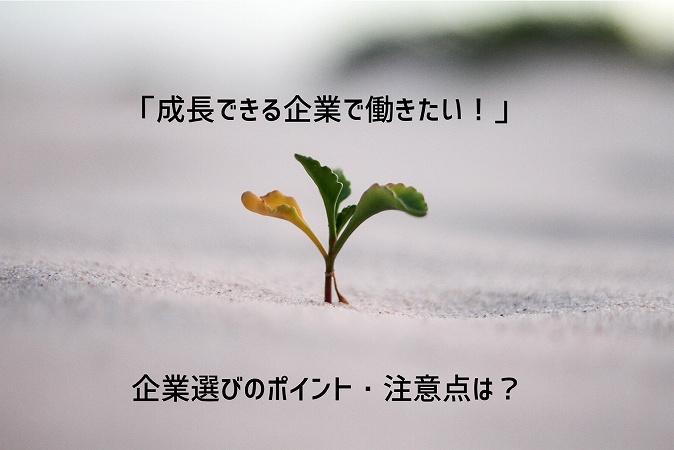 「成長できる企業で働きたい!」企業選びのポイント・注意点は?